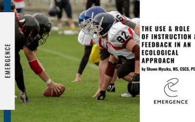 The Use & Role of Instruction & Feedback in an Ecological Approach